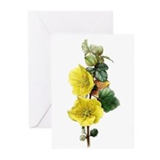 Fremontodendron Greeting Cards (Pk of 10)