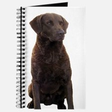 Journal - chesapeake bay retriever