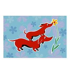 Doxie Daisy dachshund postcard set