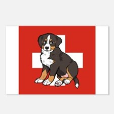 Sitting Bernese Puppy (Swiss) Postcards (Package o