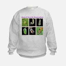 Monarch Metmorphosis Sweatshirt