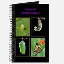 Monarch Metamorphosis Journal