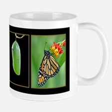 Monarch Metamorphosis Mug