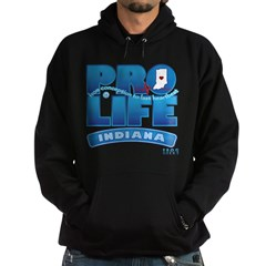 Pro-Life, from conception to Hoodie