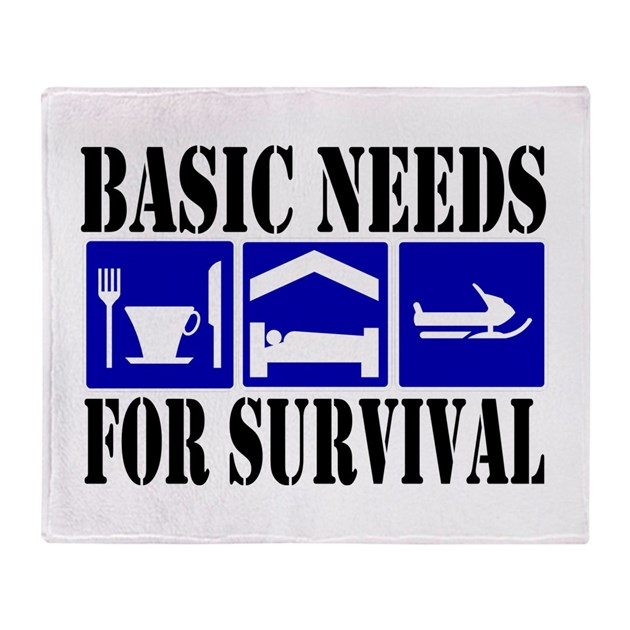 basic needs for a childs survival Survival, protection, development, participation the rights in the crc and the  optional protocols are set out in 54 articles these articles can be clustered into.