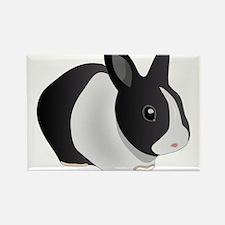 Dutch Rabbit Magnets