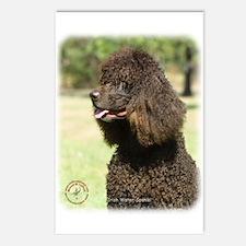 Irish Water Spaniel 9R032D-215 Postcards (Package