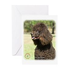Irish Water Spaniel 9R032D-215 Greeting Card