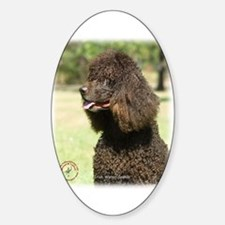 Irish Water Spaniel 9R032D-215 Decal