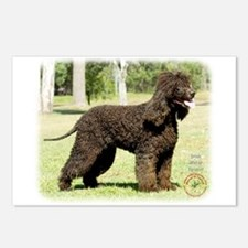 Irish Water Spaniel 9R032D-232 Postcards (Package
