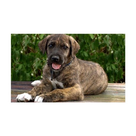 Wolfhound puppy 38.5 x 24.5 Wall Peel