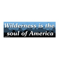 Wilderness is the soul of America wall graphic