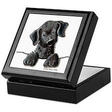 PoCKeT Black Lab Puppy Keepsake Box