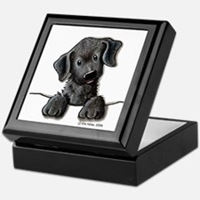 PoCKeT Black Lab Puppy Keepsake Box