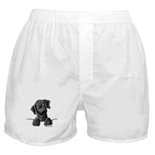 PoCKeT Black Lab Puppy Boxer Shorts