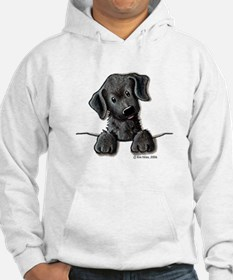 PoCKeT Black Lab Puppy Hoodie