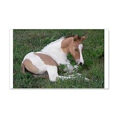 Sleeping foal 22x14 Wall Peel