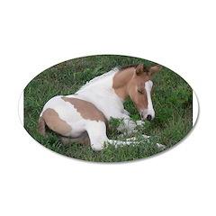 Sleeping foal 22x14 Oval Wall Peel