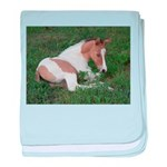 Sleeping foal baby blanket