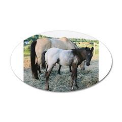Appy foal 38.5 x 24.5 Oval Wall Peel