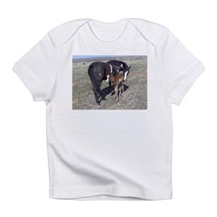 Paints and Pintos Infant T-Shirt