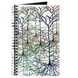 Neuroscience Journals & Spiral Notebooks