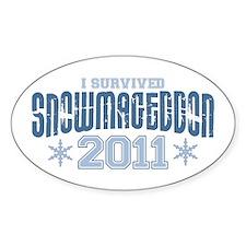 I Survived Snowmageddon 2011 Decal