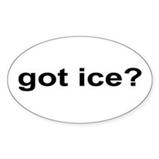 Got Ice? Decal