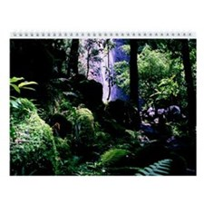 Manoa Falls Trail Wall Calendar