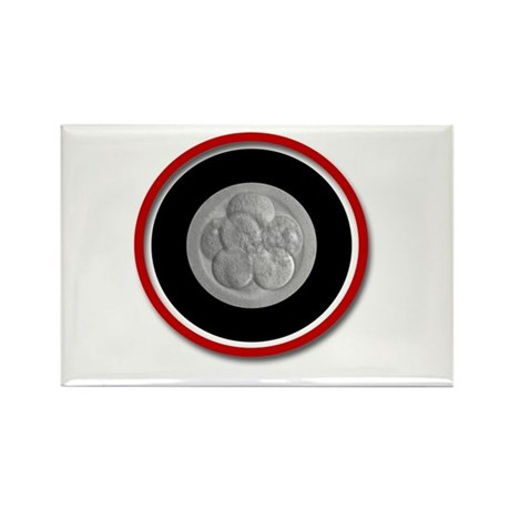 Abstract Blastocyst Rectangle Magnet