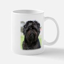 Affenpinscher 9Y516D-049 Mug