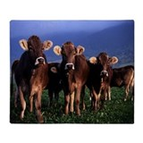 Brown swiss Fleece Blankets