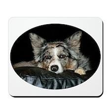 Blue Merle on Sofa Mousepad