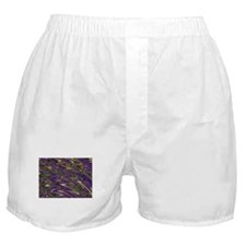 Squiggly Boxer Shorts