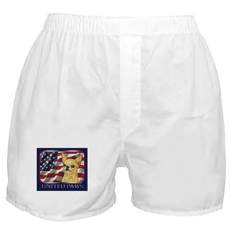 Chihuahua United Paws Boxer Shorts