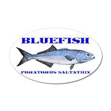 Bluefish - Potamus Saltatrix 22x14 Oval Wall Peel