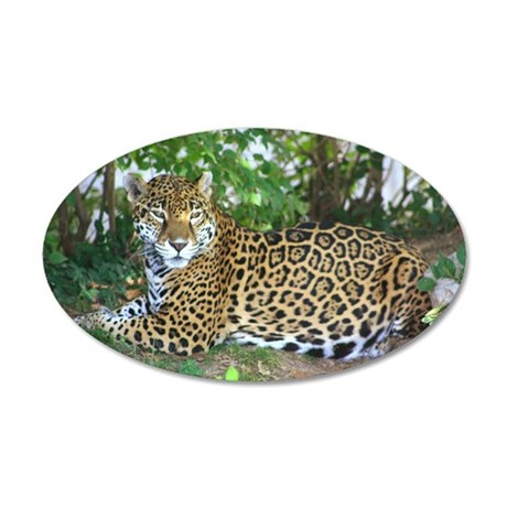 Jaguar 22x14 Oval Wall Peel