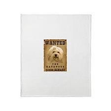 """""""Wanted"""" Havanese Throw Blanket"""
