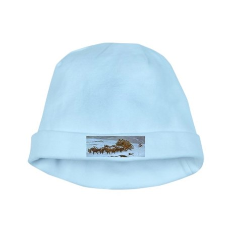 Why the Mail Was Late baby hat