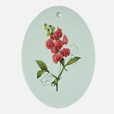 Provencal Sage Sweet Pea Ornament (Oval)