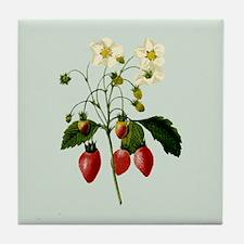 Provencal Sage Strawberries Tile Coaster