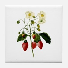Provencal Strawberries Tile Coaster