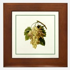 Provencal Green Stripe Grapes Framed Tile