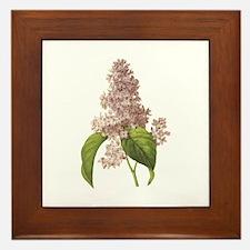 Provencal Lilac Framed Tile