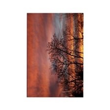 Red Sky Rectangle Magnet