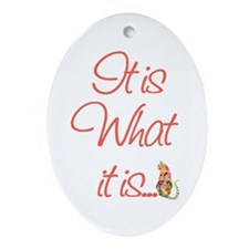 Cat Lovers It is what it is Ornament (Oval)