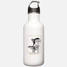 Maine Coon Cats Water Bottle