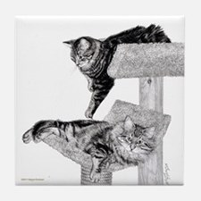 Maine Coon Cats Tile Coaster