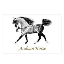 Arabian Horse Postcards (Package of 8)
