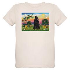 Bright Country & Belgian Shepherd T-Shirt